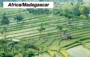 Africa/Madagascar